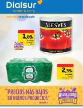 Folleto de Cash & Carry Dialsur